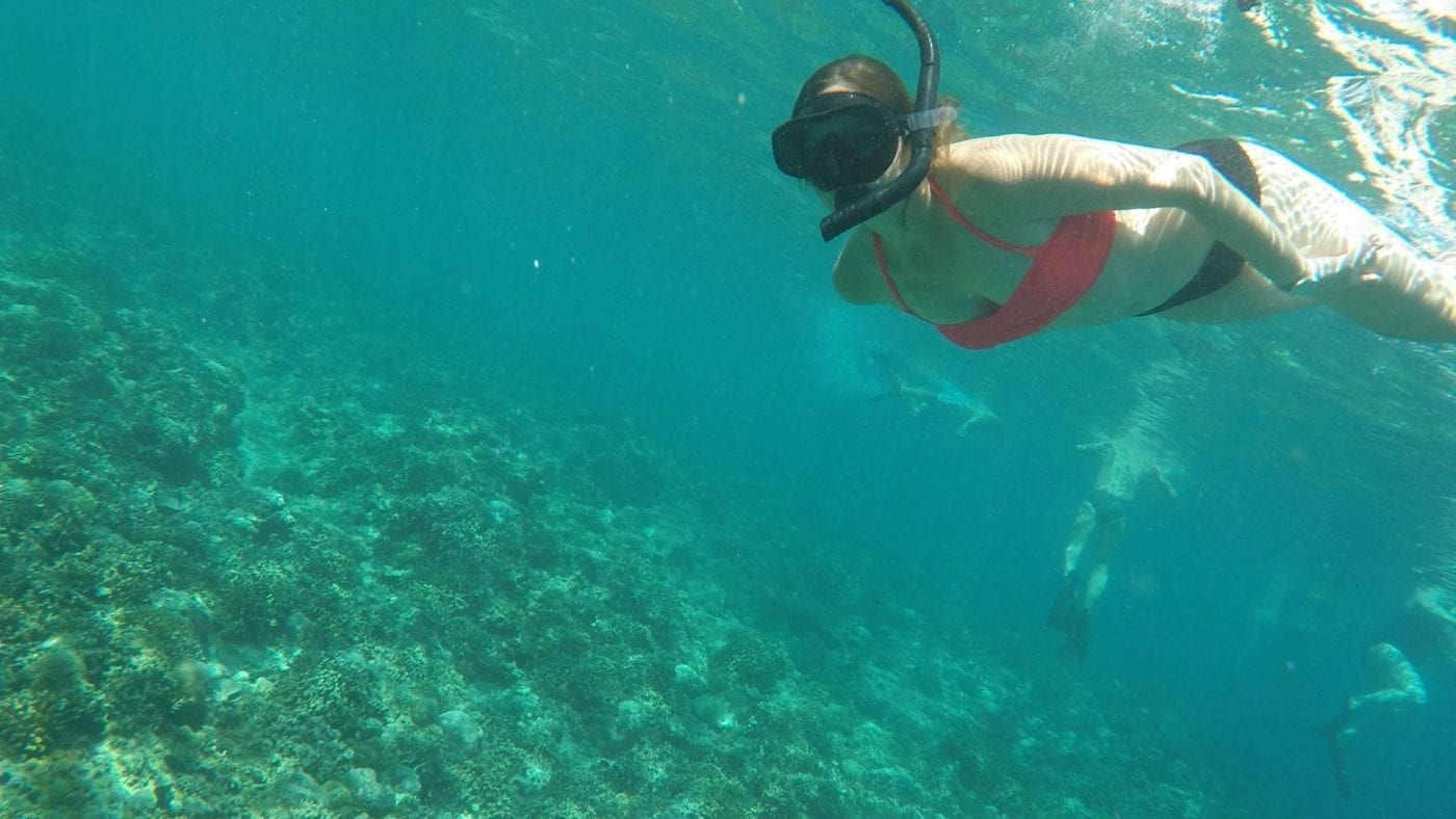 swimming adventures